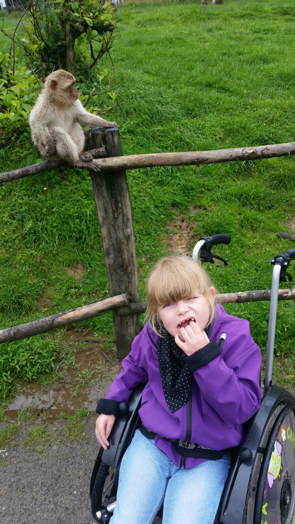 affen-und-vogelpark-2016-i