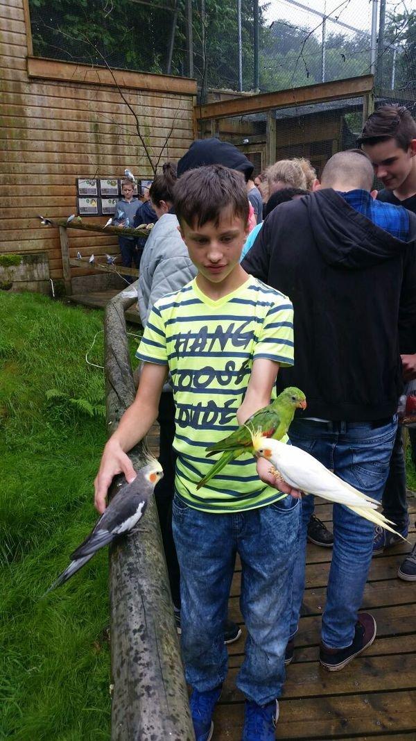 affen-und-vogelpark-2016